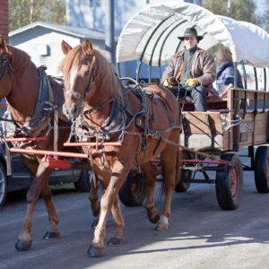 Vanhanaikainen hevoskärry, jota vetää kaksi ruskeaa hevosta.